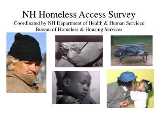 NH Homeless Access Survey