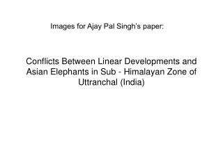 Images for Ajay Pal Singh�s paper: