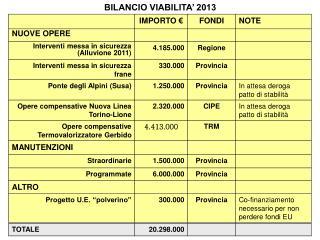 BILANCIO VIABILITA� 2013