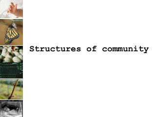 Structures of community