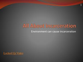All About Incarceration