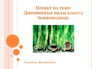 Проект на тему: Диковинные виды класса Земноводные.