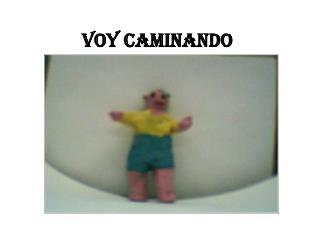 VOY CAMINANDO