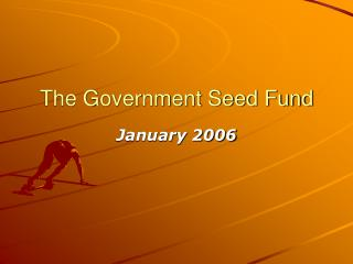 The Government Seed Fund