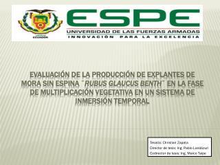 Tesista: Christian Zapata Director de tesis: Ing. Pablo Land�zuri