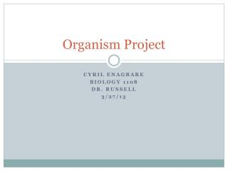 Organism Project
