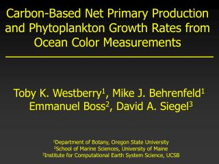 Carbon-Based Net Primary Production and Phytoplankton Growth Rates from Ocean Color Measurements