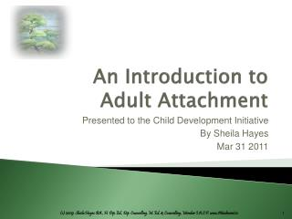 An Introduction to  Adult Attachment