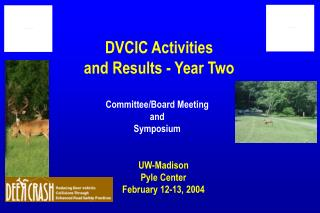 DVCIC Activities and Results - Year Two