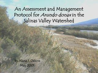 An Assessment and Management Protocol for  Arundo donax  in the Salinas Valley Watershed