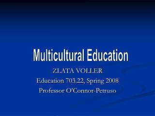 ZLATA VOLLER Education 703.22, Spring 2008 Professor O'Connor-Petruso