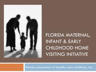 Florida maternal, infant & early childhood home visiting initiative