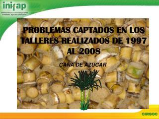PROBLEMAS CAPTADOS EN LOS TALLERES REALIZADOS DE 1997 AL 2008