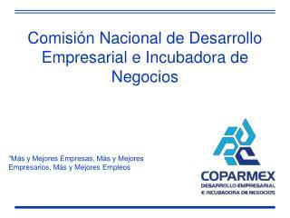 Comisión Nacional de Desarrollo Empresarial e Incubadora de Negocios