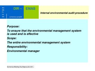 Internal environmental audit procedure