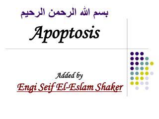 بسم الله الرحمن الرحيم Apoptosis