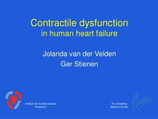 Contractile dysfunction in human heart failure