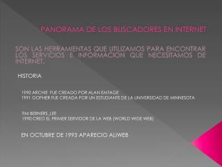 PANORAMA DE LOS BUSCADORES EN INTERNET