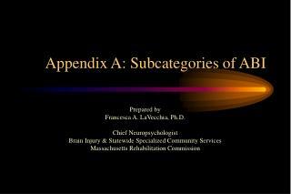 Appendix A: Subcategories of ABI