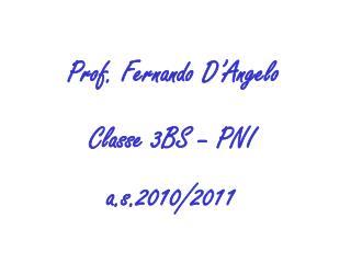 Prof. Fernando D'Angelo