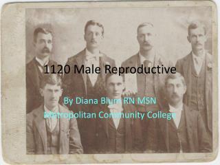 1120 Male Reproductive