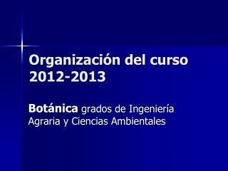 Organización del curso 2012-2013