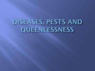 Diseases, Pests and queenlessness
