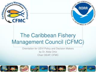 The Caribbean Fishery Management Council (CFMC)