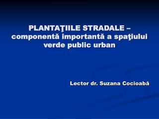PLANTAŢIILE STRADALE – componentă importantă a spaţiului verde public urban