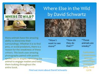 Where Else in the Wild by David Schwartz