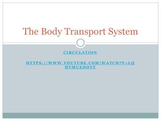 The Body Transport System