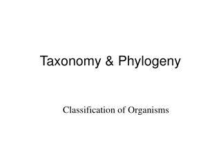 Taxonomy & Phylogeny