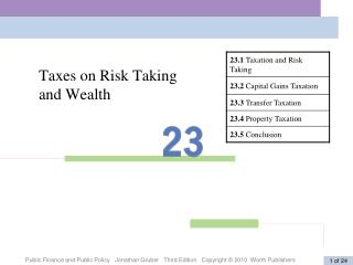 Taxes on Risk Taking  and Wealth