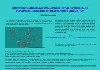 ANTHRACYCLINE MULTI-DRUG RESISTANCE REVERSAL BY VERAPAMIL- MOLECULAR MECHANISM ELUCIDATION