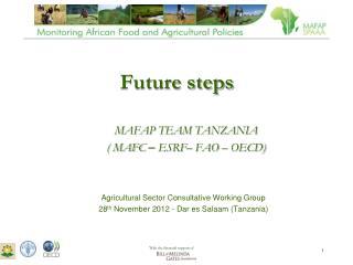 Future steps