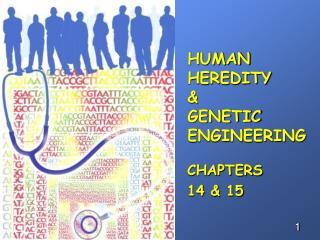 HUMAN HEREDITY & GENETIC ENGINEERING