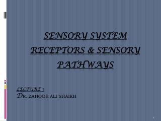 SENSORY SYSTEM RECEPTORS & SENSORY PATHWAYS