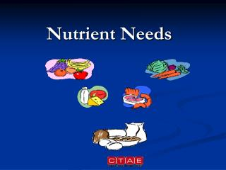Nutrient Needs