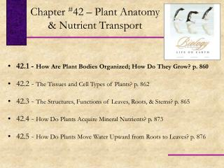 42.1 -  How Are Plant Bodies Organized; How Do They Grow? p. 860