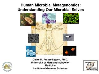 Human Microbial Metagenomics: Understanding Our Microbial Selves