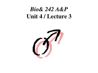 Bio 242 AP  Unit 4