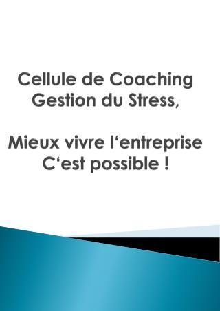Cellule  de Coaching Gestion  du Stress, Mieux vivre l'entreprise C'est possible  !