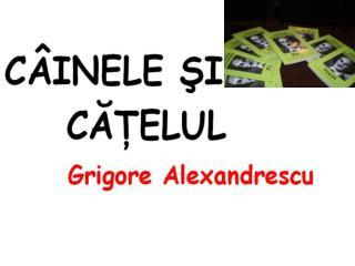 -Cine a fost Gr Alexandrescu? -Ce opere literare aţi studiat din creaţia lui Gr Alexandrescu?