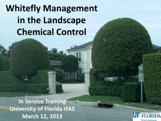 Whitefly Management in the Landscape Chemical Control