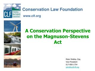 A Conservation Perspective on the Magnuson-Stevens Act