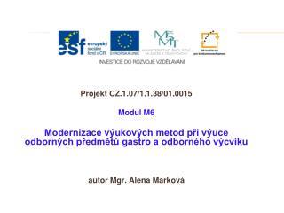 Projekt CZ.1.07/1.1.38/01.0015 Modul M6