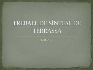 TREBALL DE SÍNTESI  DE  TERRASSA