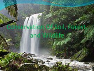 Conservation Of Soil, Forest,                  and Wildlife