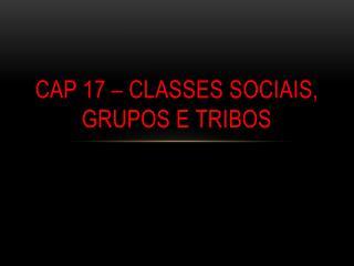 CAP 17 – CLASSES SOCIAIS, GRUPOS E TRIBOS