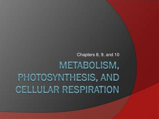 Metabolism, Photosynthesis, and Cellular Respiration